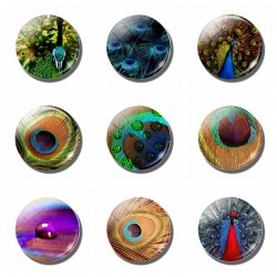 peacock refrigerator sticker - magnetic peafowls fridge magnet memo 30mm round glass gemstone