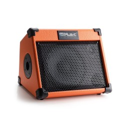 Music amplifier - guitars - electric guitars - outdoor speaker
