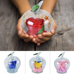 Infinity rose in apple-shaped glass - handmade